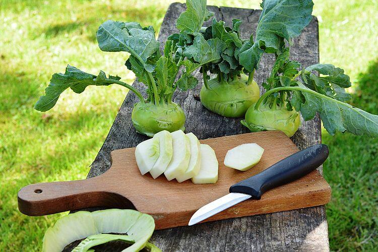 AktionstagIss-Dein-Gemüse-Tag soll zu gesünderer Ernährung animieren.