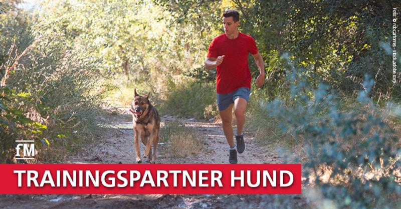 Joggen mit Hund: Ein paar Grundregeln gilt es zu beachten – Tipps vom Hundetrainer.