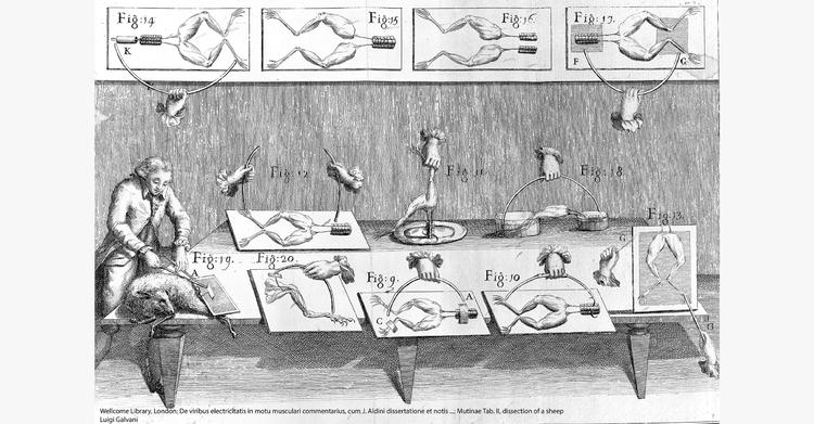 Luigi Galvani entdeckte das Phänomen, das die Grundlage der modernen Elektrophysiologie bildet. Wellcome Library London; De viribus electricitatis – Luigi Galvani