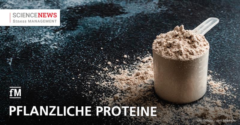 Science News: Wie gut verdaulich sind pflanzliche Proteine?