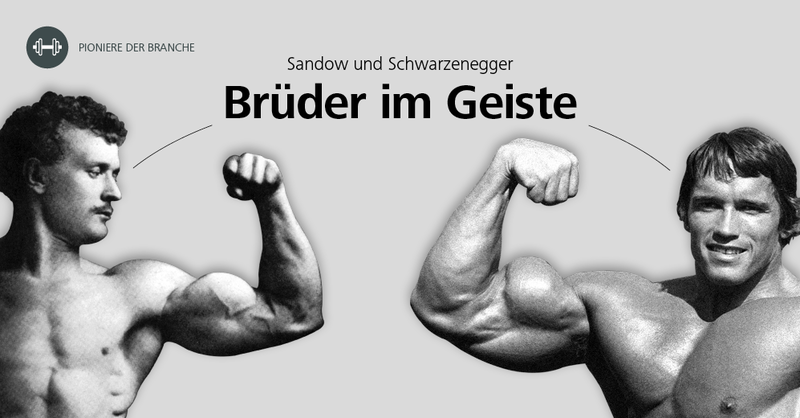 The Business Of mgf bodybuilding