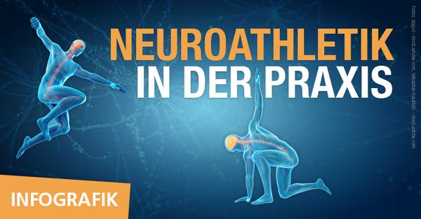 Infografik zur fM ONLINE-Artikelserie 'Neuroathletiktraining (NAT) in der Praxis' von Daniel Kaptain