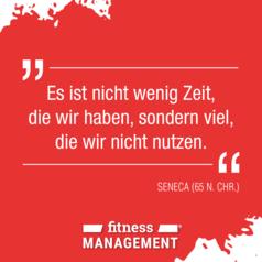 'Es ist nicht wenig Zeit, die wir haben, sondern viel, die wir nicht nutzen.' – SENECA