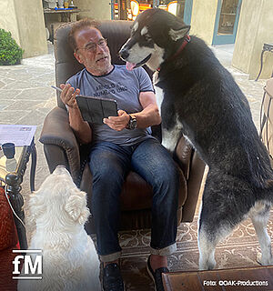 Arnold Schwarzenegger erklärt seinen Hunden die Hausregel - Leider halten sie sich nicht immer dran.