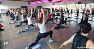 Mehr als Yoga: Sportprogramm, Workshops und Vorträge zu Nachhaltigkeit, Umweltschutz und Bewegung: MOVE FOR FUTURE DAY in der Hamburger KAIFU-LODGE