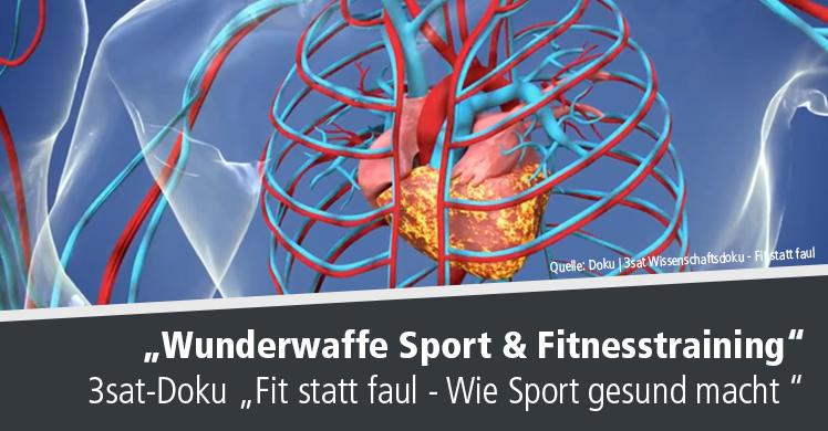Spannende 3sat-Dokumentation 'Fit statt faul – Wie Sport gesund macht'.