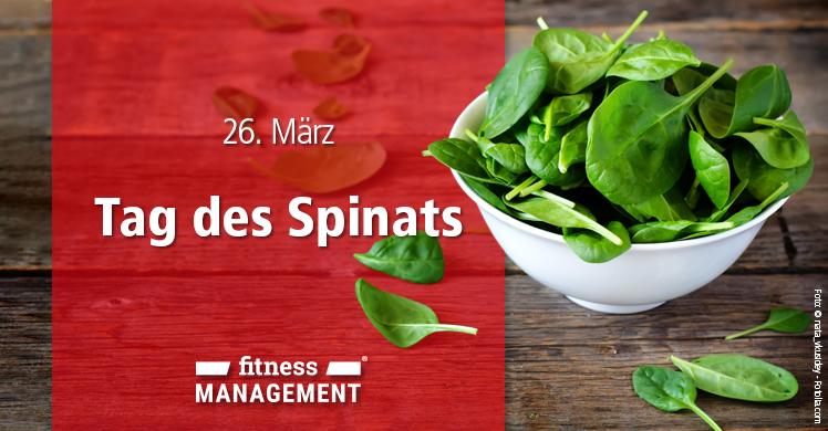 Spinat als Booster für die Gesundheit: Warum jeder das grüne Blattgemüse regelmäßig essen sollte